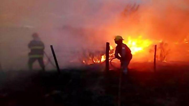 Incendio voraz en Senillosa. FOTOS