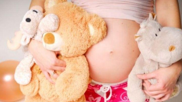Salta: tiene 12 años, está embarazada de su padre y darán el bebé en adopción