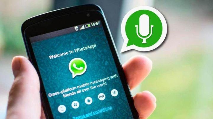 ¿Cómo guardar los audios de WhatsApp antes de poder enviarlos?