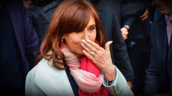 """""""No sé si Cristina Kirchner va a ir presa, pero va a terminar sin un solo peso"""""""