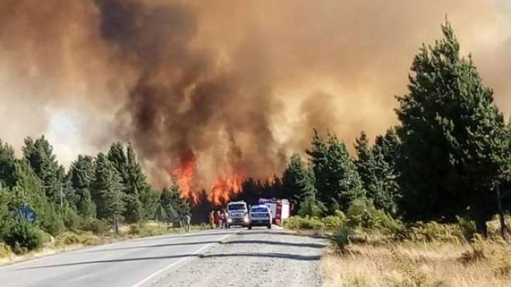 Impresionante incendio cruzó la ruta 40: Luchan contra el fuego