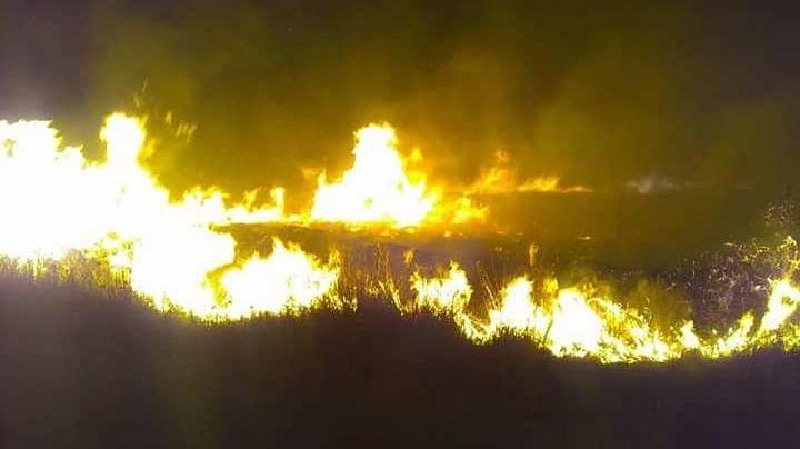 """""""12 horas sin control"""": Voraz incendio entre Senillosa y Arroyito"""