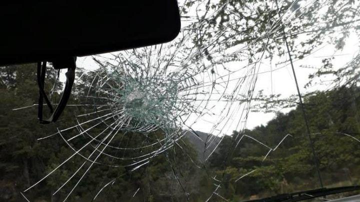 """""""Encapuchados al ataque"""": Violencia en Villa Mascardi contra la comisionada de fomento"""