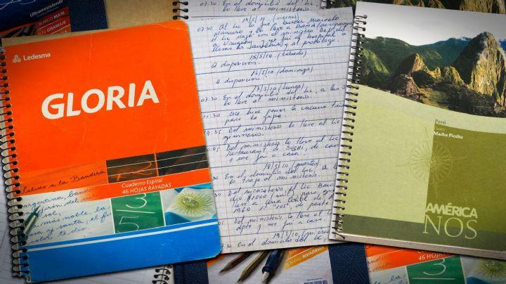 """""""Con la aparición de los originales, se cae la causa de los cuadernos"""""""