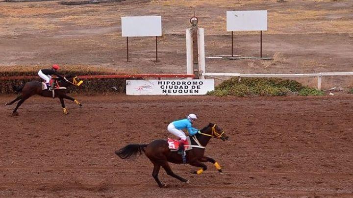 """Otro caballo murió"": Misterio en el hipódromo de Neuquén"