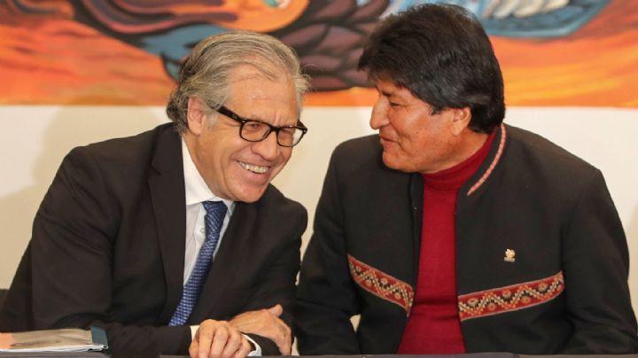 La OEA halló graves irregularidades en las elecciones de Bolivia, ¿Qué decidió?