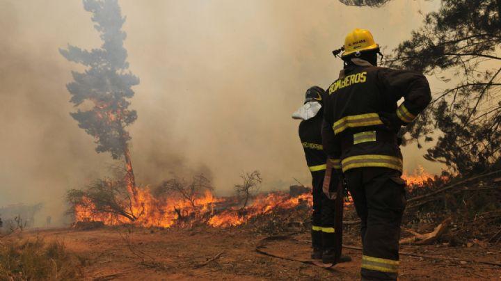 Declaran alerta roja en Chile por un incendio forestal en Valparaíso y Casablanca