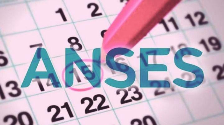 ¡Mirá el calendario de pagos de Anses para noviembre!