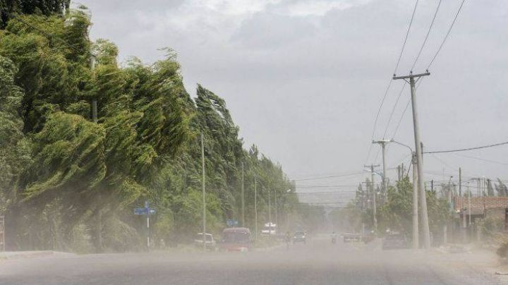 ¡Ojo Viedma y Patagones!: Vientos intensos acecharán la región ¡Recomendaciones!