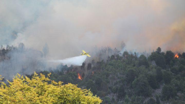 Las llamas consumieron los pinos de Caviahue