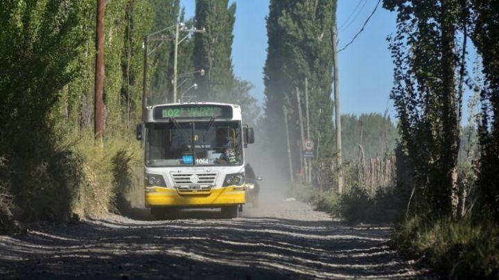 Chofer suspendido: ¿Qué dijo Autobuses Neuquén?
