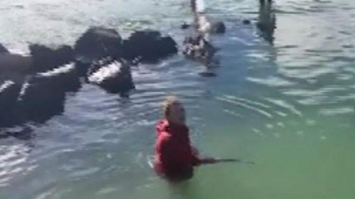 Se estaba bañando en plena playa, cuando algo impresionante apareció. Mirá