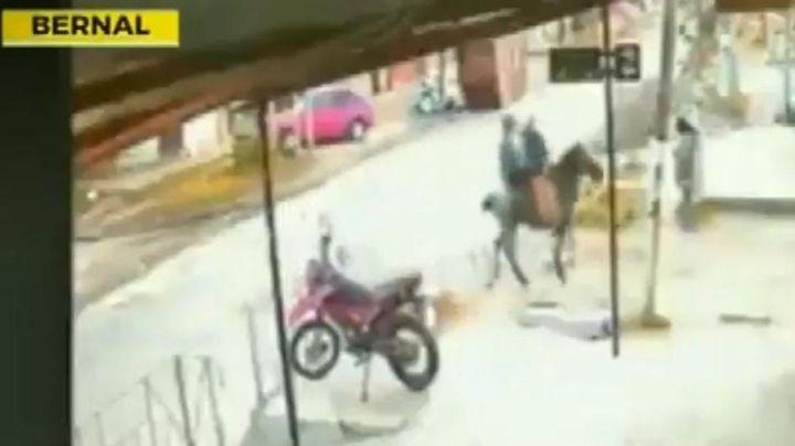"""""""Cabachorros"""":  No tienen moto, pero roban a caballo. Mirá el video"""