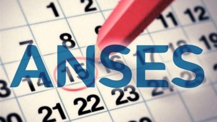 Pagos en Anses: ¡Mirá el calendario de la semana!